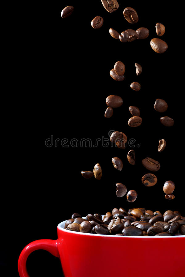 Coffee beans falling into cup stock image