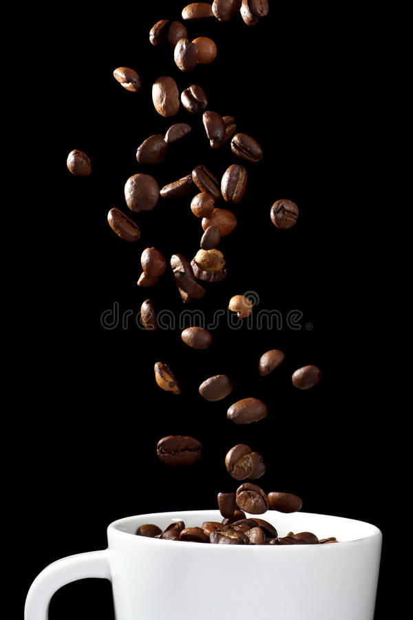 Coffee beans falling into cup royalty free stock photography