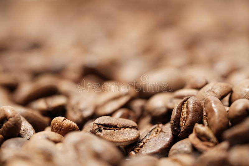 Coffee beans. Freshly roasted coffee beans in a coffee roasting house stock image