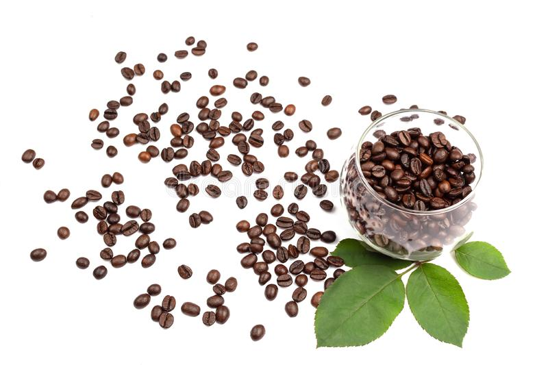 Coffee beans in the glass cup royalty free stock images