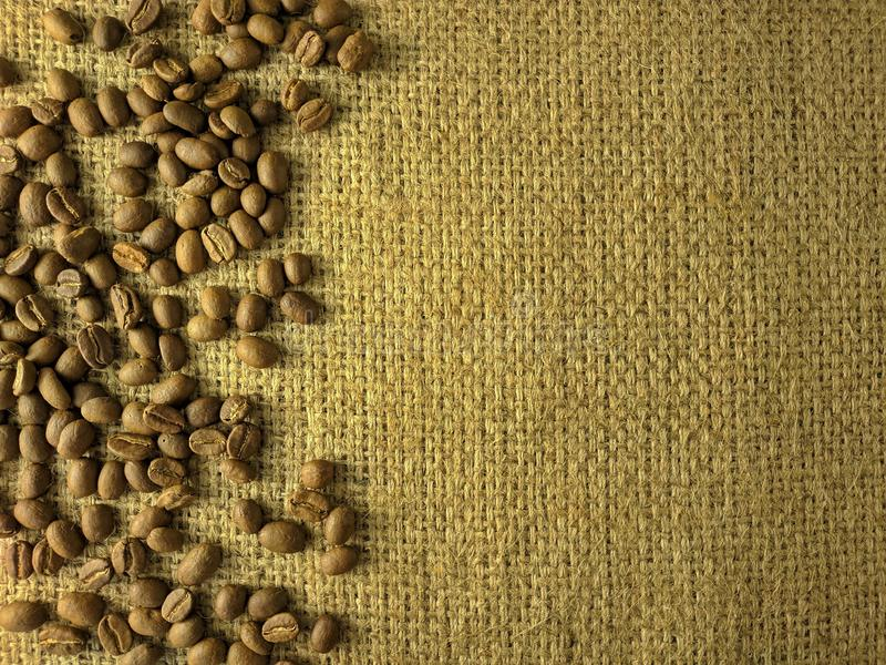 Coffee beans on gunny texture royalty free stock images
