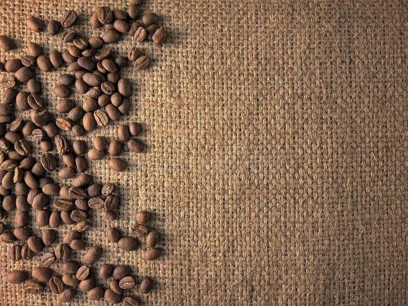 Coffee beans on gunny texture royalty free stock photography