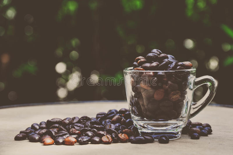 Download Coffee beans stock photo. Image of espresso, beans, background - 33124328