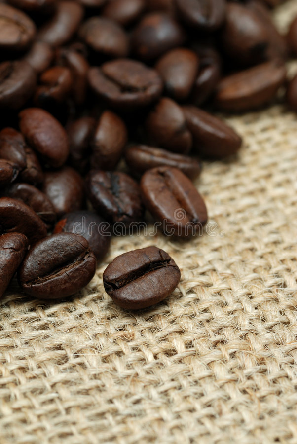 Coffee beans on hessian cloth. Macro view of dry roasted coffee beans on hessian sack or cloth stock image