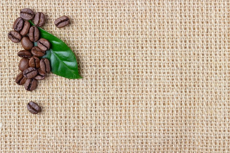 Coffee beans and leaf over burlap background royalty free stock image