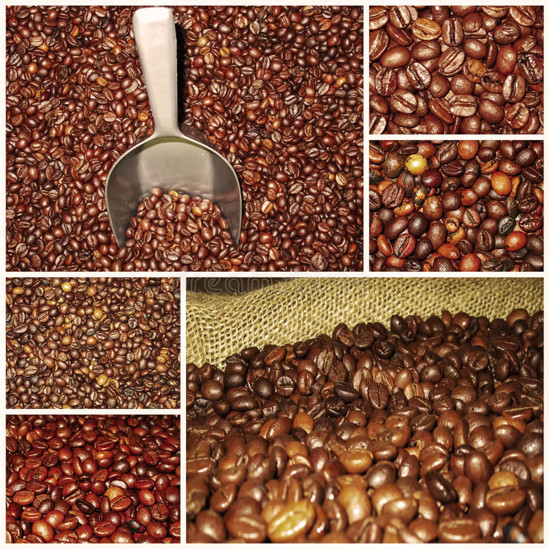 Coffee beans mixtures collage stock photography