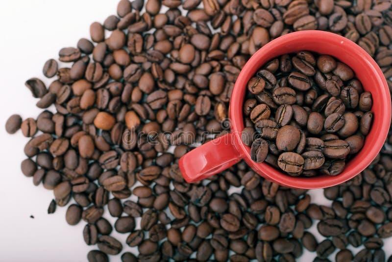 Coffee Beans and mug stock image
