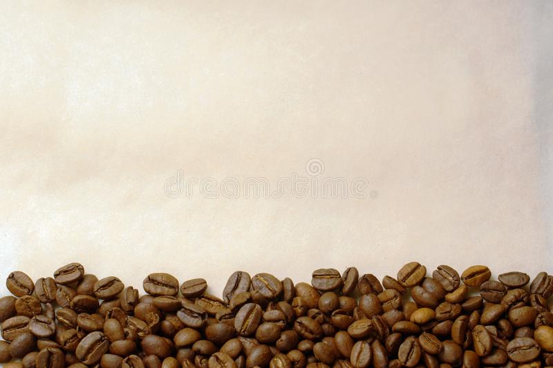 Coffee beans on old burnt paper background stock image