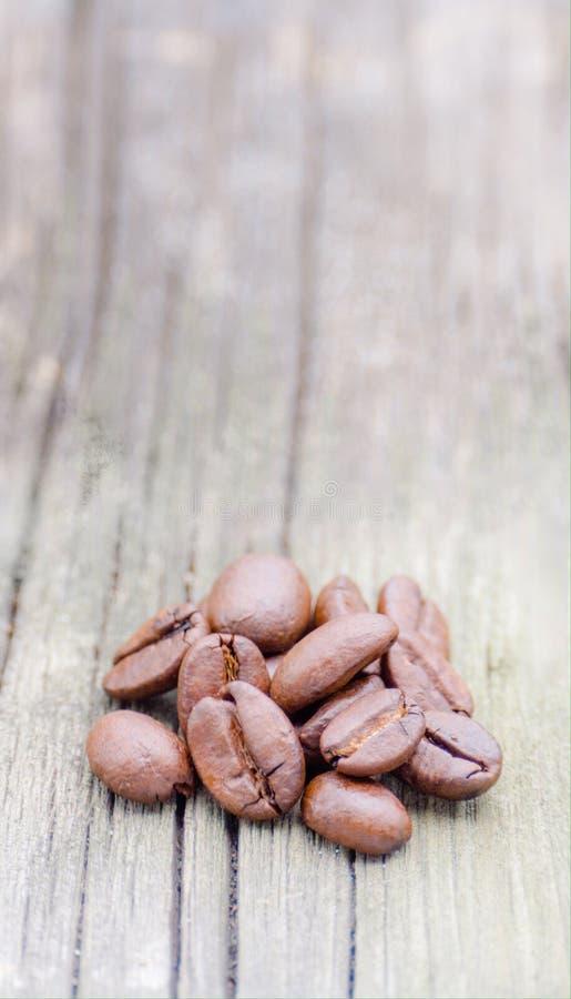 Coffee beans. stock photos
