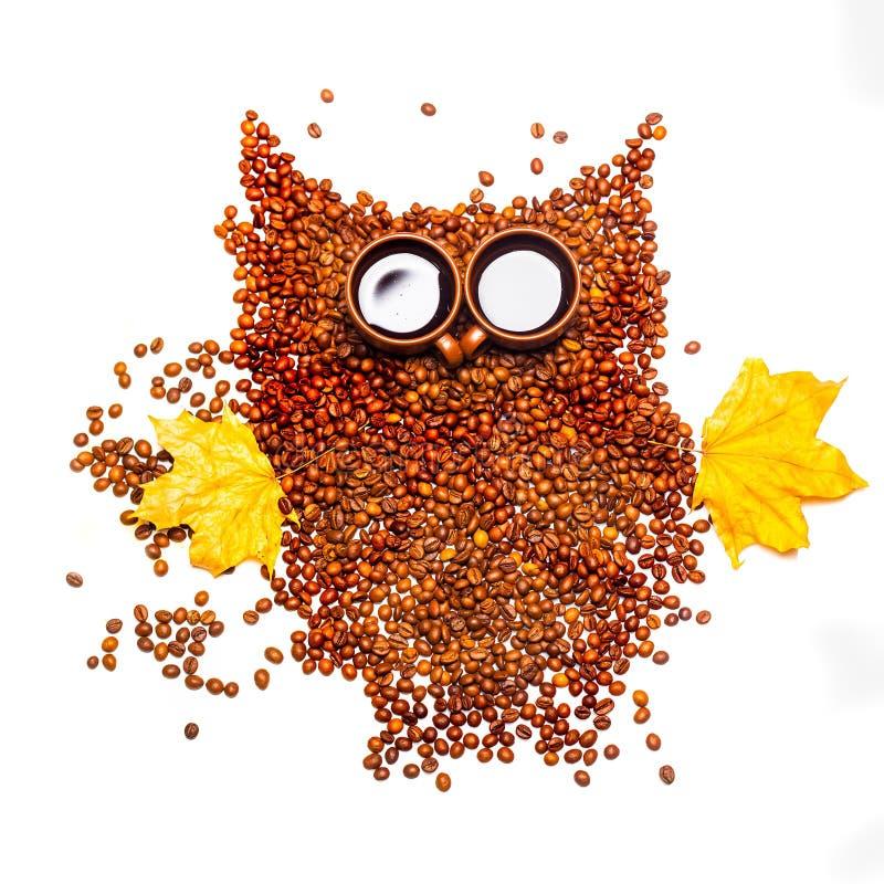 Coffee beans owl isolated stock photos
