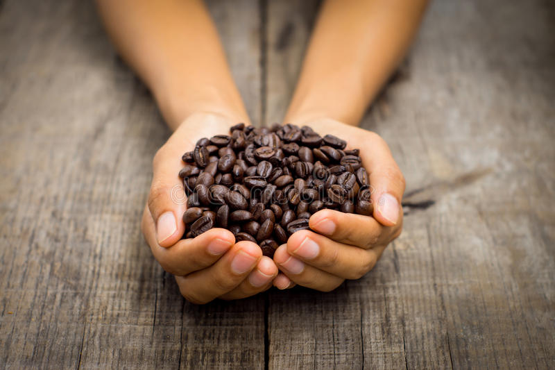 Coffee beans. A person holding roasted coffee beans on wood background stock image