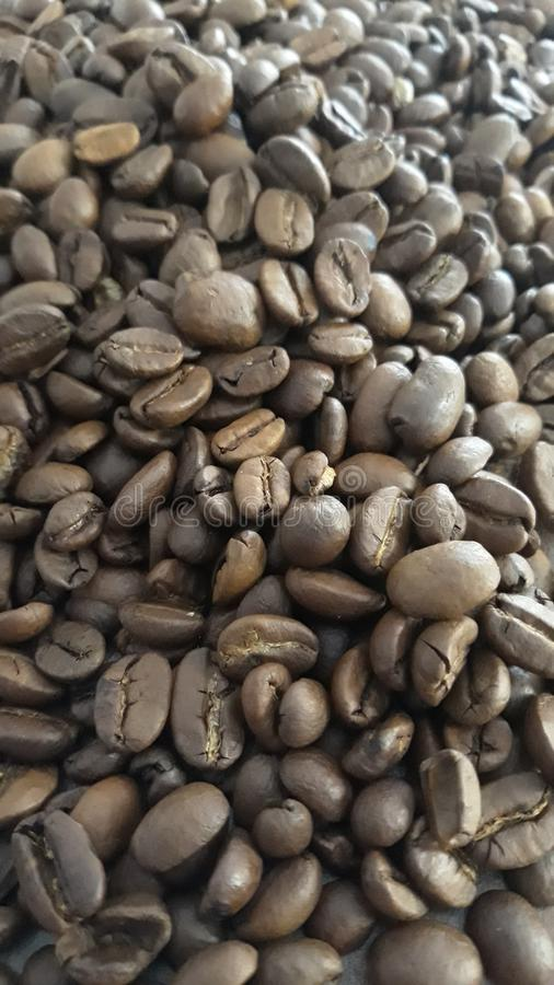 Coffee beans on the pile royalty free stock photography