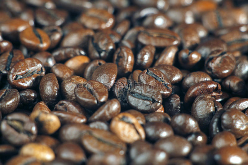 Coffee beans. Roasted coffee beans on the table, close-up royalty free stock photos