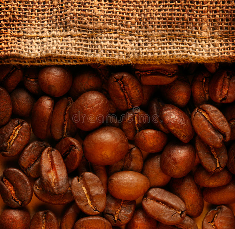 Coffee beans with sack royalty free stock image