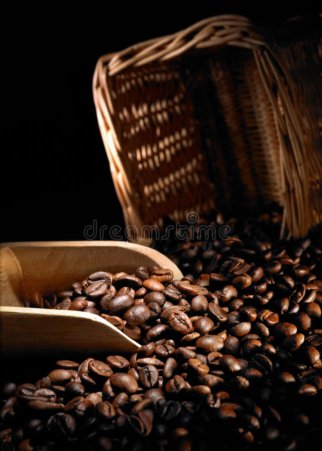 Coffee beans and scoop. Selecting the finest quality coffee beans from rattan basket using wooden scoop stock photography