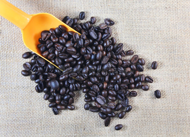 Coffee beans with scoop stock images