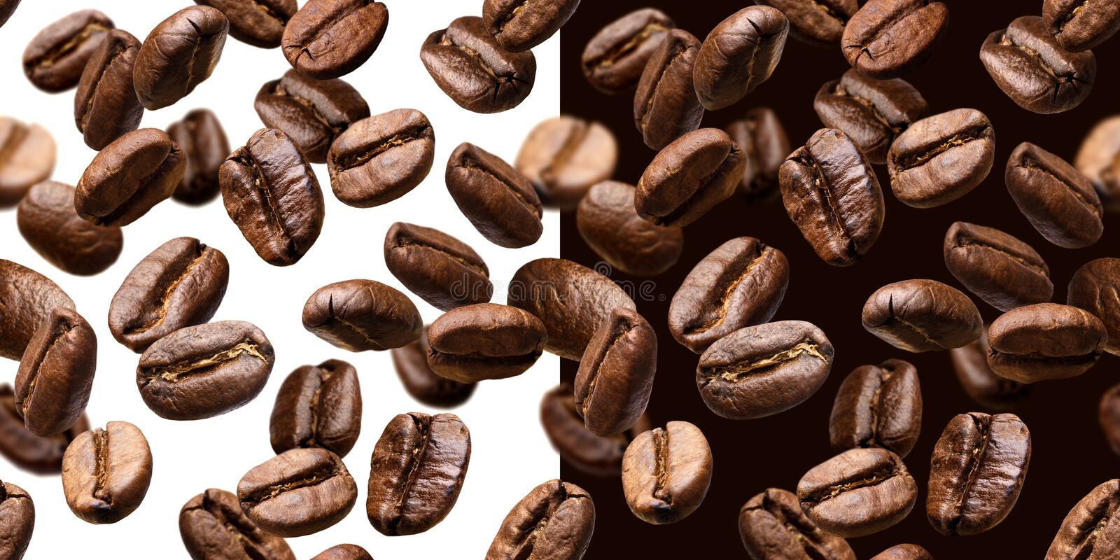 Coffee beans seamless pattern, isolated on white and black background stock photo