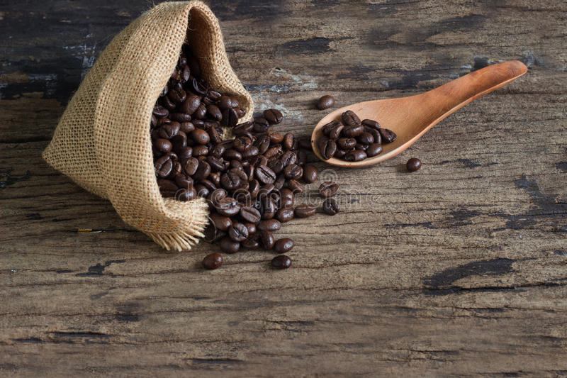 Coffee beans Selective focus at spoon, Copy space royalty free stock images