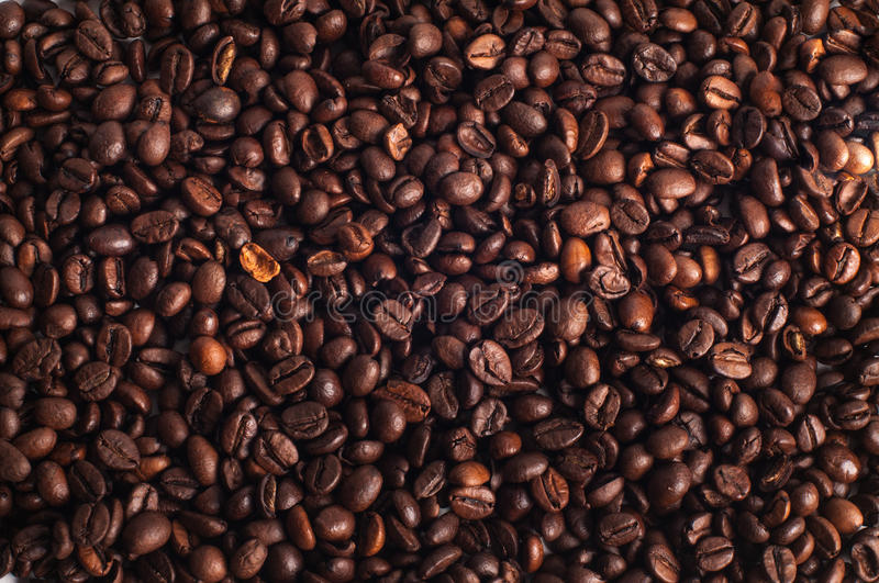 Coffee beans side by side. Brown roasted coffee beans closeup stock images
