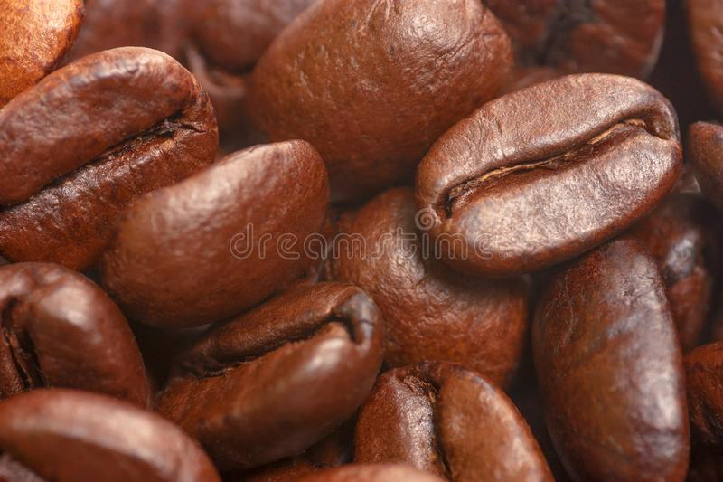 Coffee beans in soft focus view. royalty free stock photos