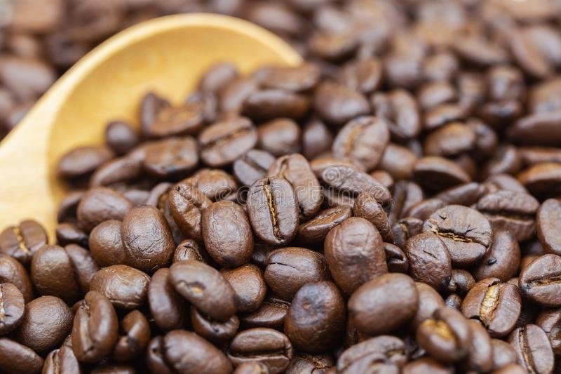 Coffee beans texture or coffee beans background. Brown roasted coffee beans. coffee beans on wooden spoon royalty free stock photography