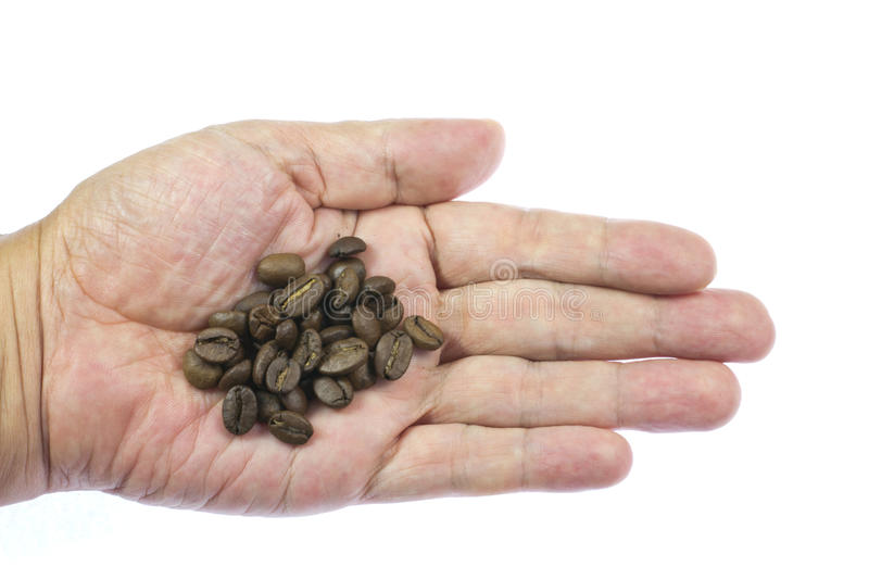 Download Coffee Beans On Top Of Palm Stock Image - Image: 26609863