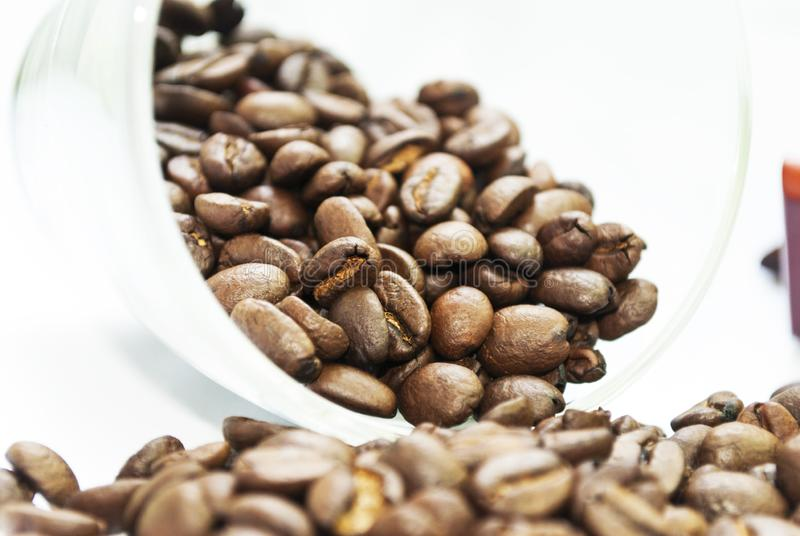Coffee beans in a transparent cup on a white background royalty free stock photography