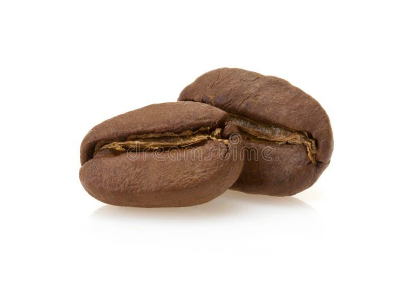 Coffee beans on white stock image