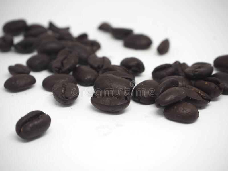 coffee beans on white background for cafe stock images