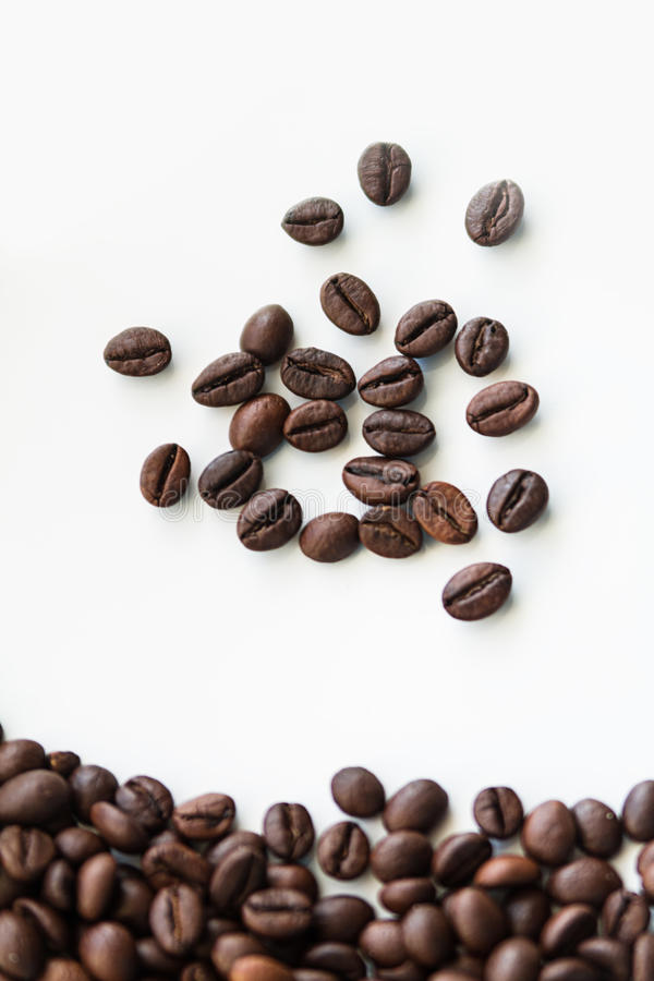 Coffee beans. royalty free stock photo