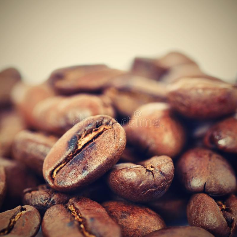 Coffee beans on white clean background. Freshly roasted scented coffee for espresso. 100% arabica. royalty free stock image