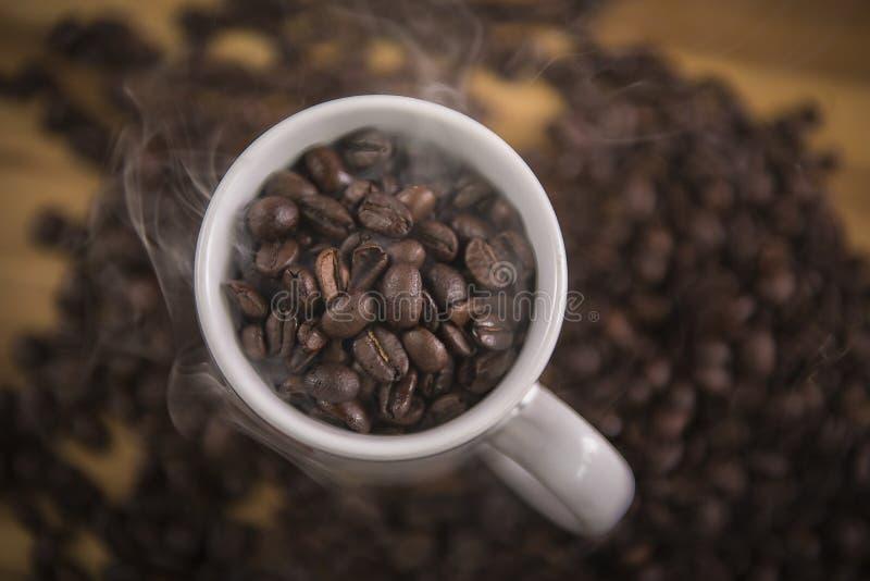 Coffee beans in white mug royalty free stock photo