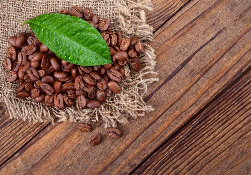 Coffee beans on wood texture. Closeup, macro royalty free stock image