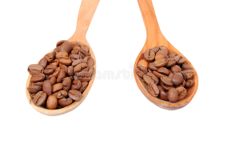 Coffee beans in wooden spoon stock image