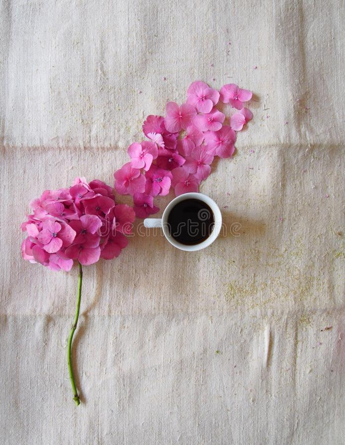 Coffee and beautiful, pink flowers royalty free stock photos