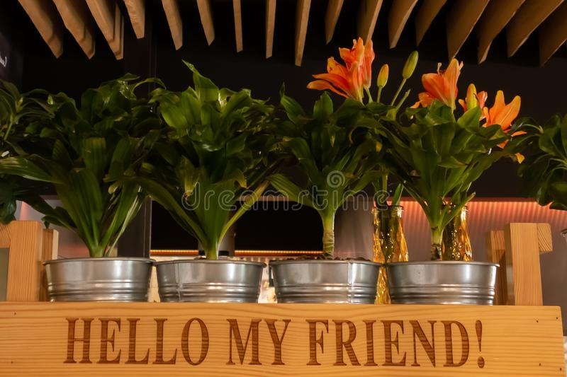 Coffee cafe decoration with tree pots, wooden box, bag and glass of coffee on shelf. Metal buckets with indoor plants in a wooden stock photo