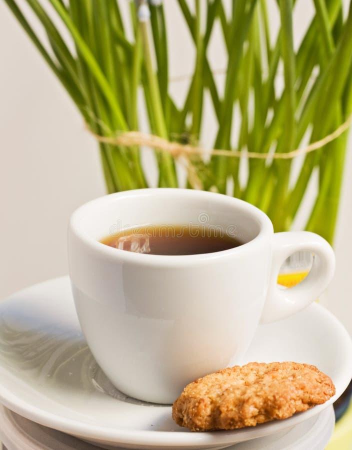 Coffee Cap Stock Photo