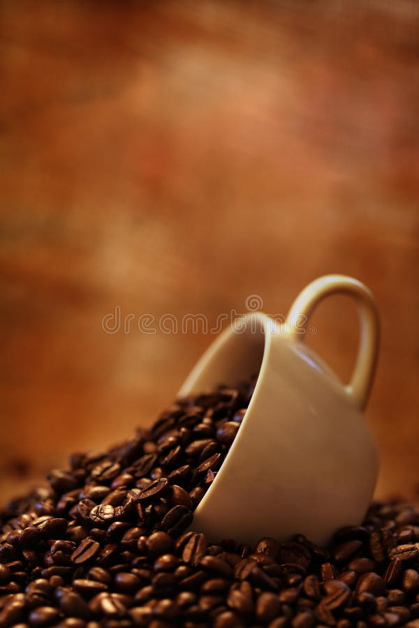 Coffee cup. On roasted coffee beans stock photos