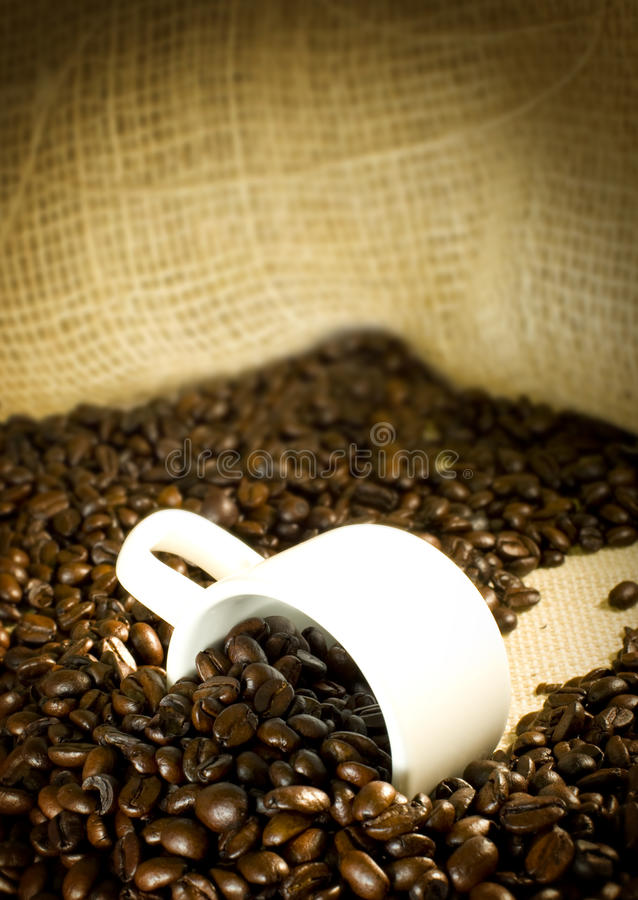 Download Coffee and cup stock photo. Image of brew, cafe, morning - 25638434