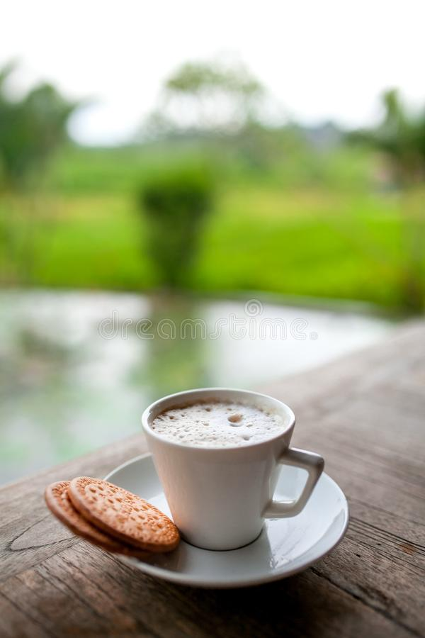 Coffee cup background of cappuccino with latte on wooden table with cookie on background with green leaves and pond. Beautiful tro stock photography
