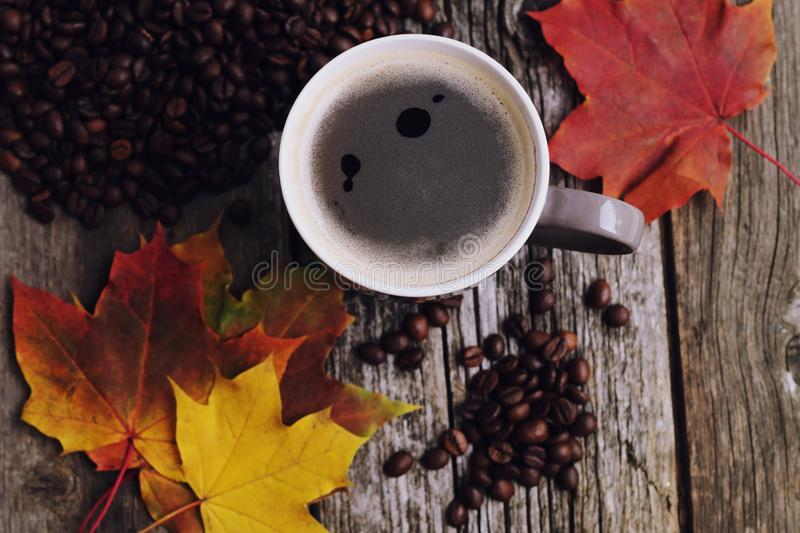 Coffee cup with coffee beans and maple leaves. Coffee cup with coffee beans and colored maple leaves stock photography