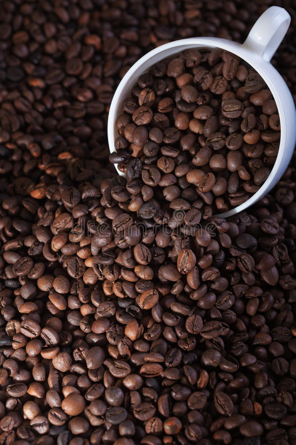 Coffee cup covered in beans stock image