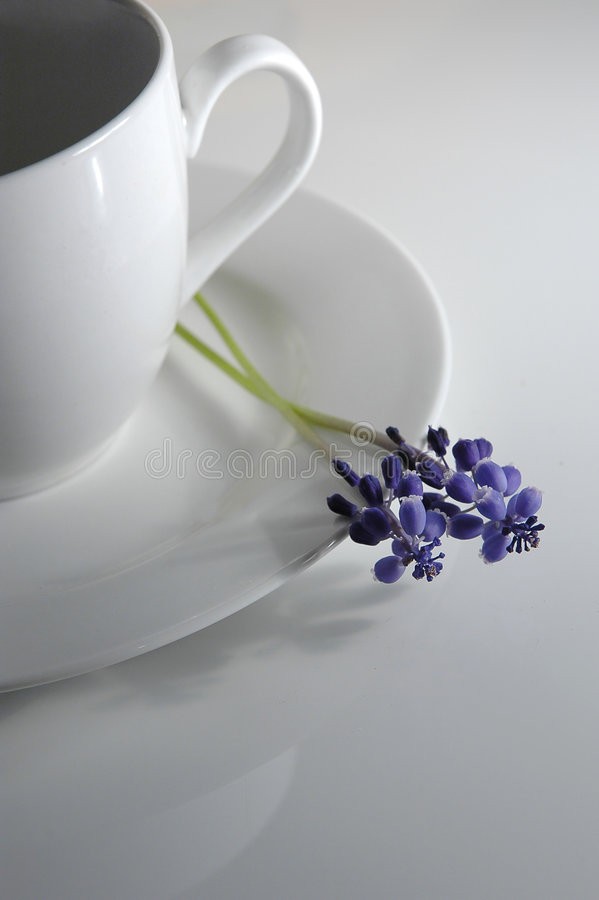 Coffee cup and flower royalty free stock images