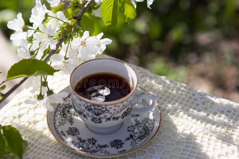 Coffee Cup, Flower, Tableware, Tea stock image