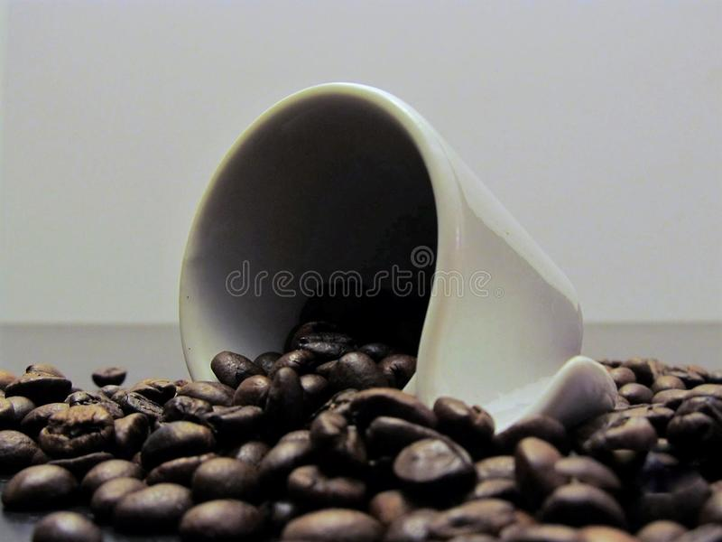 Coffee cup with coffee beans royalty free stock images