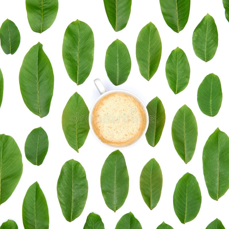 Coffee cup on green leaves background. Good morning coffee. stock images