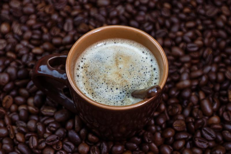 Coffee cup with roasted coffee beans on red background, coffee concept, close up coffee photo.  stock photography