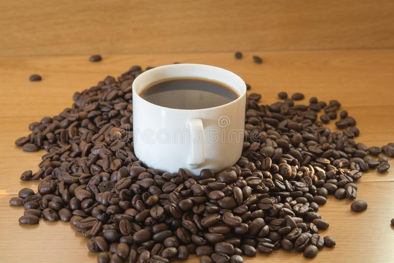 Coffee in cup and seed stock photos