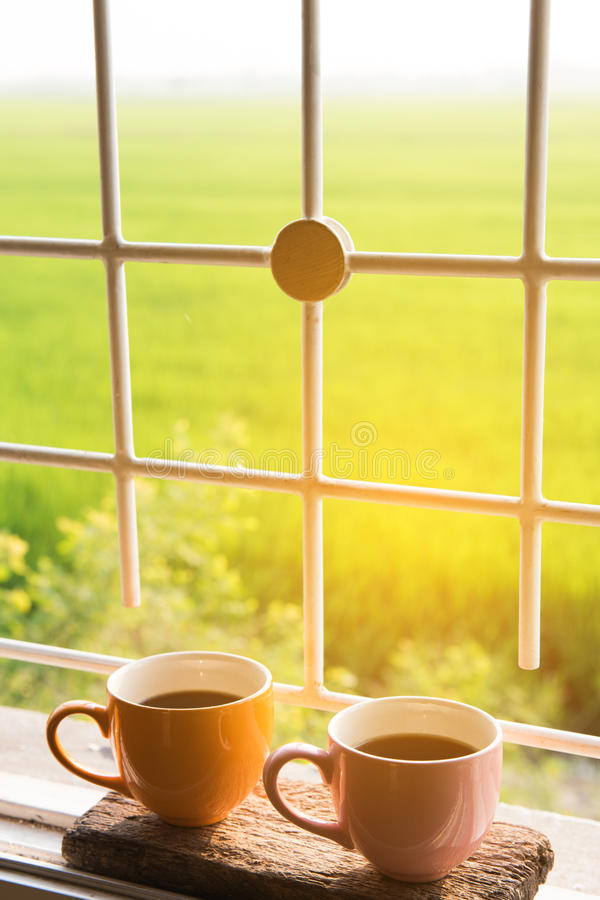 Coffee cup at window on the morning with beautiful nature royalty free stock photos