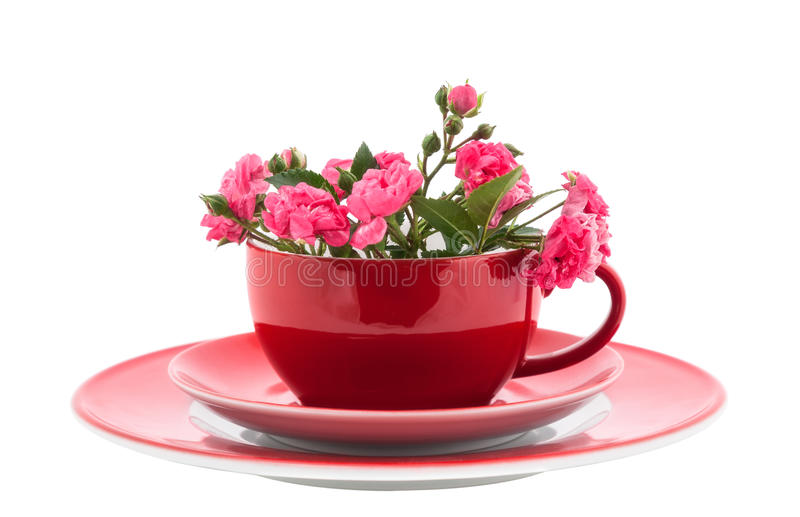 Coffee Cups with Pink Roses stock photo